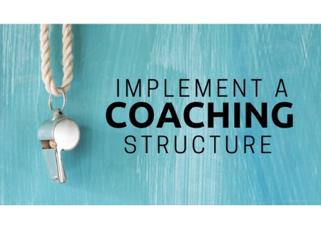 Implementing a Coaching Structure ($149)